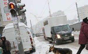 В Астраханской области каждое третье ДТП – это наезд на пешехода