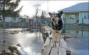 Майкоп готовится к безаварийному пропуску паводка