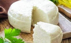 Адыгейским сыром будут снабжать Сербию