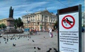 В Ростове запрещено кормление птиц