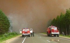 На ликвидацию лесного пожара в Ростовской области вынуждены стягивать дополнительные силы