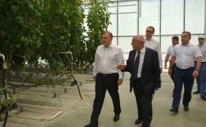 Оптимизация проекта агробизнесинкубатора сэкономит Адыгее 344 млн руб