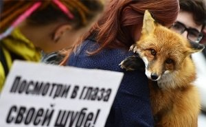 Волгоградские зоозащитники присоединились к акции «Животные – не одежда!»