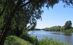 В 2018 году Астраханской области на сохранение Волги дадут 400 млн руб.