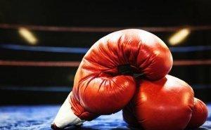 К ЧМ-2018 по боксу среди студентов Элиста должна быть готова в августе