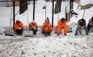 На уборку улиц Ростова в 2019 году выделяют почти 1 млрд рублей