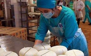 Турцию заинтересовали адыгейский сыр, соль и чай