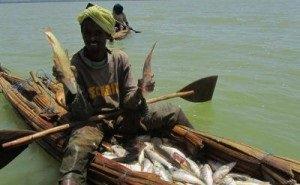 Аквакультуру в Эфиопии возрождают астраханцы