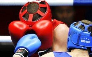 В Адыгее состоится первый международный турнир по профессиональному боксу