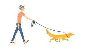 Ростовчанин вышел «выгуливать» бумажную собаку