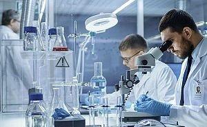 Астраханские учёные создали съедобную упаковку для продуктов