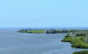 Дельту реки Дон хотят превратить в туристско-рекреационную зону