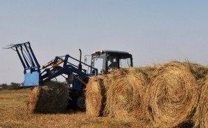 На заготовку кормов Калмыкия просит больше 1 млрд рублей