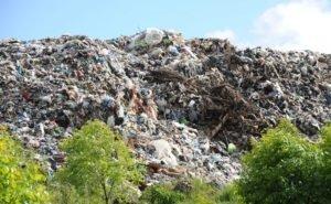 Земли мусорных полигонов на Дону изымают по суду