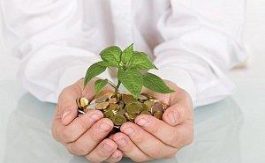 Волгоградские предприниматели могут рассчитывать на дополнительные меры господдержки