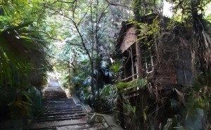 Сочинцы против застройки жилыми домами территории бывшей турбазы