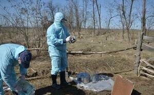 Суд признал бездействие правительства Калмыкии в деле о скотомогильниках