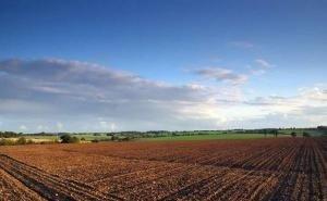 Прокуратура Кубани не смогла оспорить приватизацию земли «Агрокомплексом им. Ткачёва»