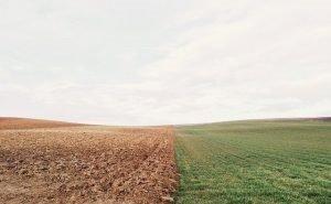 Калмыкия получит средства на введение земель в сельхозоборот