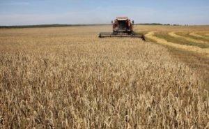 В Калмыкии испытают новые методы анализа сельхозугодий