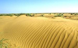 В Калмыкии появится Центр по борьбе с опустыниванием