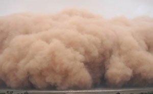 На Дону назвали возможную причину возникновения пыльных бурь