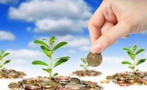 Компании, причиняющие ущерб экологии, рискуют получать меньше дивидендов