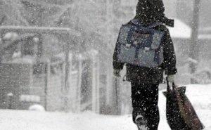 В Волгограде кондуктор, высадившая ребёнка в мороз, уволена