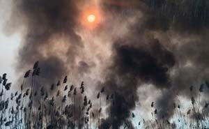 В Астраханской области три дня горит заповедник