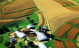 На Кубани запретят строительство на землях сельхозназначения
