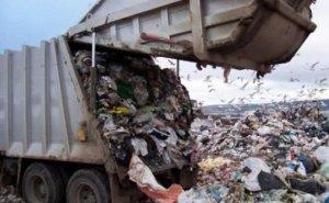 На Дону рядом с парком краснокнижных птиц хотят строить мусорный завод