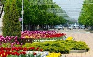 В Майкопе появится новая зона отдыха