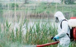 На проверку обработки водоёмов в Волгограде готовы потратить 173 тысячи рублей
