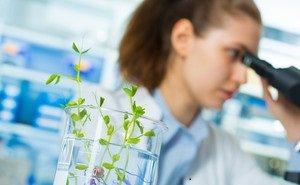 В Адыгее появится агрохимическая лаборатория