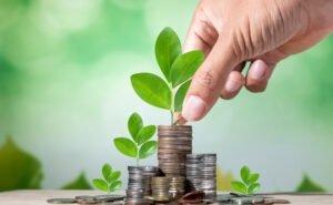 Предпринимателям Элисты начнут выдавать субсидии