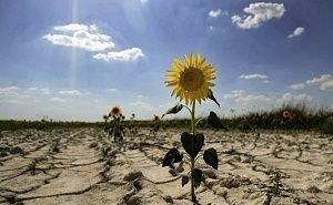 Астраханская область в борьбе с опустыниванием рассчитывает на помощь регионов