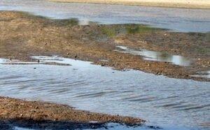 200 млн рублей не спасли реку Царёв от обмеления
