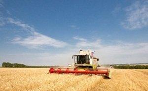 В Ростовской области растёт ВРП