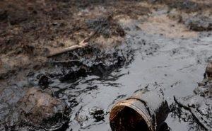 Экологические ЧП в Калмыкии можно будет отметить на электронной карте