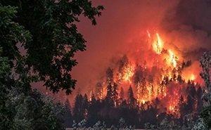 Власти Ростовской области отрапортовали о готовности к пожароопасному сезону