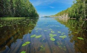 В Астраханской области восстанавливают проточность водоёмов