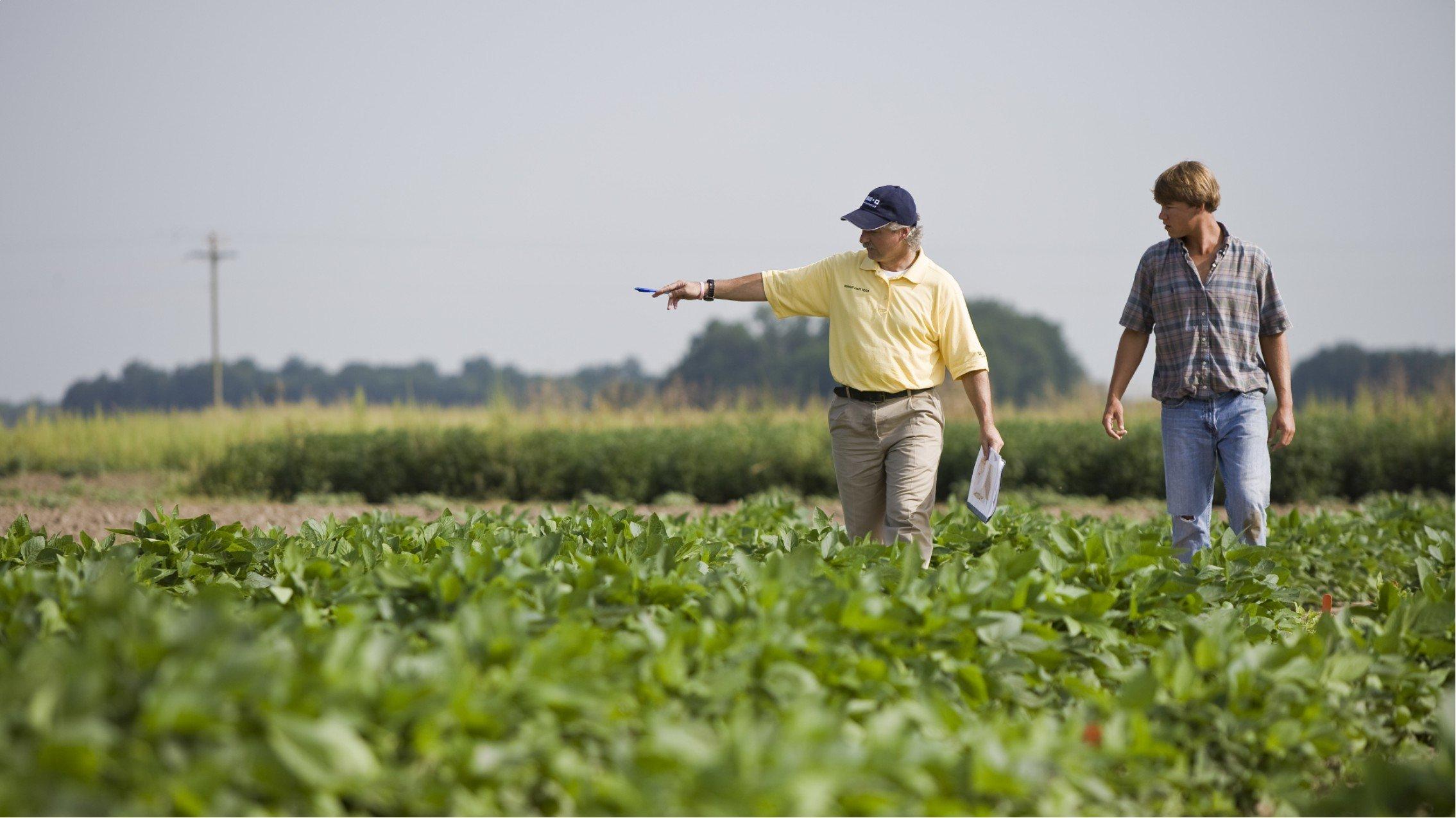 Что необходимо знать про агроконсалтинг?