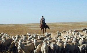В сельском хозяйстве Калмыкии грядут серьёзные изменения