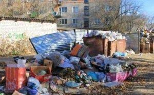 После вывоза 25 тонн мусора чище Астрахань не стала
